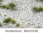 high angle view of some grass plants in dry muddy ambiance - stock photo