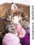 Stock photo maine coon kitten sleeping resting in a basket of balls of yarn 86430169