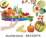 illustration with different... | Shutterstock .eps vector #86510074
