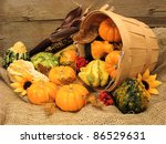 Harvest pail of spilling autumn gourds and pumpkins on burlap and with wood background - stock photo
