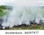 burn the grass | Shutterstock . vector #86597977