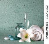 spa elements   Shutterstock . vector #86649262