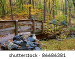 Autumn Forest With Wood Bridge...