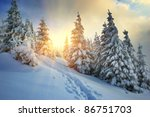 Winter Landscape On A Sunset....