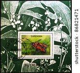 Small photo of TANZANIA - CIRCA 2006: A stamp printed in Tanzania shows butterfly, Zygaena laeta, circa 2006