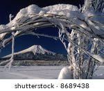 the mt fuji in snow gate | Shutterstock . vector #8689438