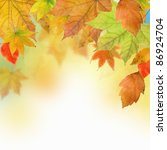 autumn leaves | Shutterstock . vector #86924704