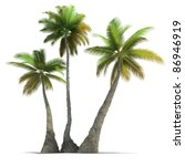 3d rendering of three  palm... | Shutterstock . vector #86946919