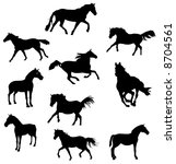 horse vector shapes | Shutterstock .eps vector #8704561