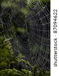 the spider's web of a spider in ... | Shutterstock . vector #87094622
