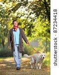 Stock photo a boy and his dog labrador retriever walking in the park in autumn 87234418