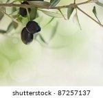 Summer Olives Design Backgroun...