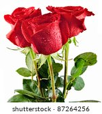 Stock photo bunch of red roses isolated on white 87264256