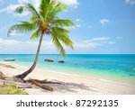 tropical beach with coconut... | Shutterstock . vector #87292135