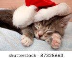 Stock photo the grey kitten sleeps in a new year s cap 87328663