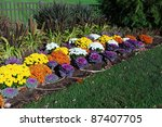 Colorful Flower Garden With...