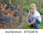 Little Girl With Farm Chickens