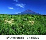a big udo flowers field near... | Shutterstock . vector #8755039