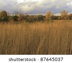 Prairie Landscape At Sunset In...