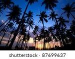 tropic sunset through the... | Shutterstock . vector #87699637