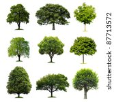 Stock photo trees collection 87713572