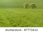vibrant scenery with a fresh green meadow and trees at spring time - stock photo