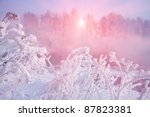 Winter Frost Haze Landscape