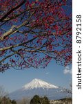 mount fuji with red and white... | Shutterstock . vector #8792158