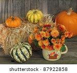 Autumn Scene Of Mum Flowers And ...