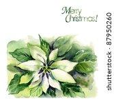 watercolor  poinsettia ... | Shutterstock . vector #87950260