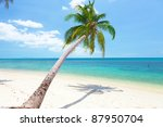 tropical beach with coconut... | Shutterstock . vector #87950704