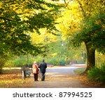 Senior Couple In The Foggy Park