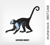 Engraving Vintage Monkey From ...