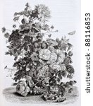 flowers vase old illustration....