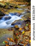 Autumn Water Stream