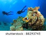 scuba divers swim over coral...   Shutterstock . vector #88293745