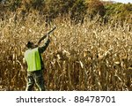 man with a safety vest hunting along the edge of a cornfield - stock photo