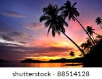 Stock photo palm trees silhouette at sunset 88514128