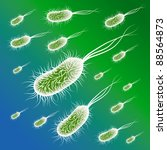 group of the e coli bacteries.... | Shutterstock .eps vector #88564873