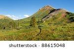 Wildflowers galore on idyllic alpine meadow in the San Juan Mountains along the Colorado Trail. - stock photo