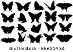 Stock vector butterfly collage isolated on white 88631458