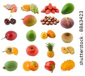 large page of fruits and nuts... | Shutterstock . vector #8863423