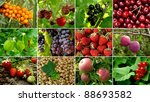 some organic fruits and berries ... | Shutterstock . vector #88693582