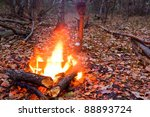 Fire In A Autumn Forest