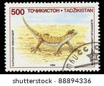 Small photo of TADZIKISTAN - CIRCA 1994: A stamp printed in Tadzikistan shows Alsophylax Loricatus Loricatus, circa 1994