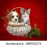 Stock photo christmas puppy and kitten sitting in a basket together on a red background with copy space 88952272
