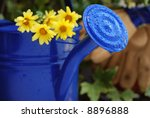 Gardening still-life with blue watering can.  Flowers and work gloves out of focus in the background.  Extremely shallow dof with focus on the water droplets on the spout - stock photo