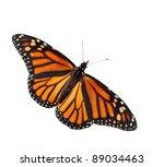 Stock photo dorsal view of danaus plexippus monarch butterfly isolated 89034463