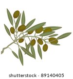 olive branch with ripe olives ... | Shutterstock .eps vector #89140405