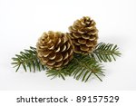 Two Big Pine Cones On The Whit...